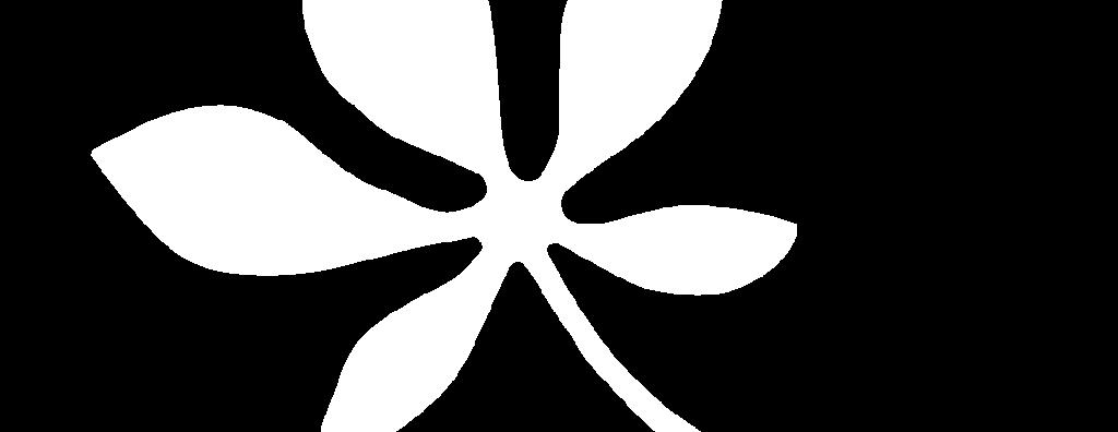 sulken leaf - Fostoria Dentist